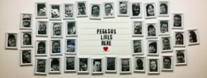 """Image depicting a white wall with black and white pictures surrounding the words """"Pegasus Lives Here"""""""